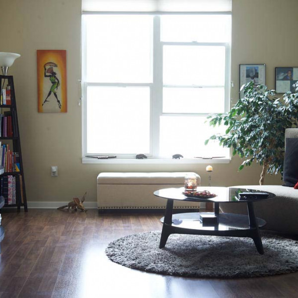 Cavalier apartments ucribs - 1 bedroom apartments fort collins ...